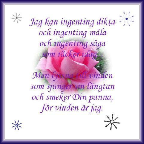 rosendikt_1199531543_11352184